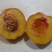 peach insides